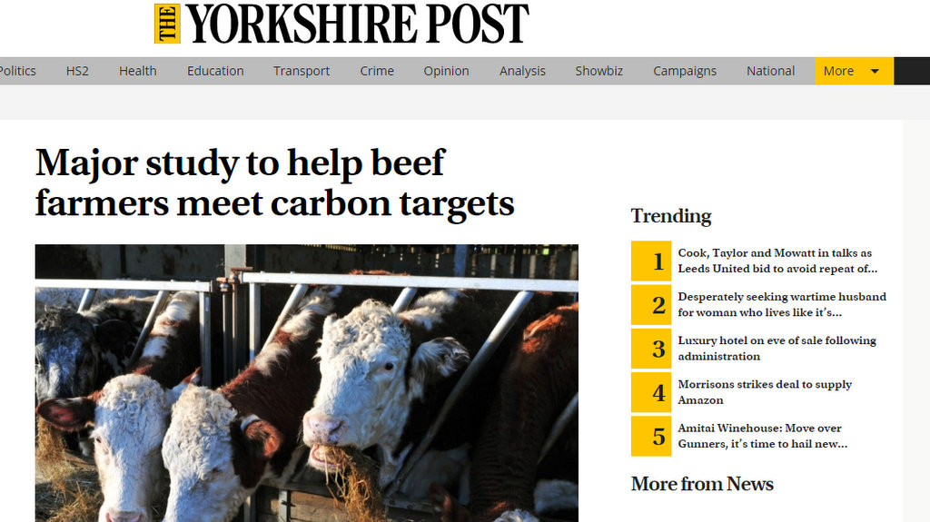 Major study to help beef farmers meet carbon targets