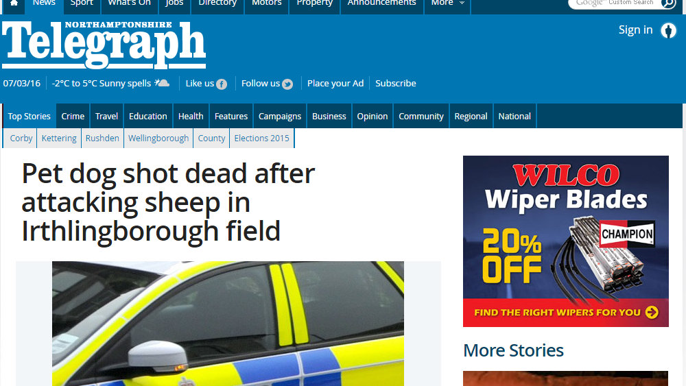Pet dog shot dead after attacking sheep in Irthlingborough field