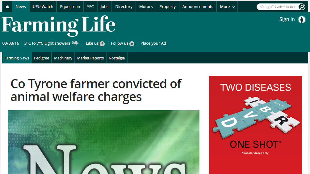 Co Tyrone farmer convicted of animal welfare charges