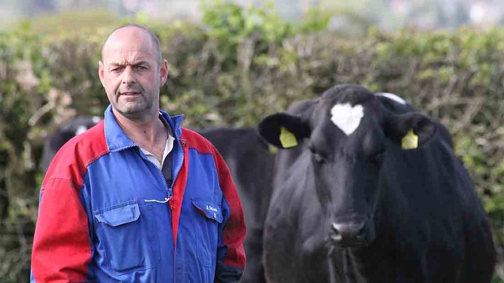 EU Referendum, one year on: An in-depth look at the dairy sector