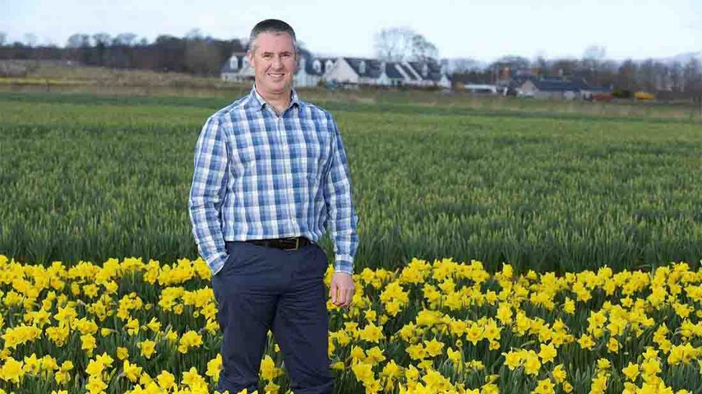 With Spring in the air, Scottish daffodil supplier offers tips to would-be growers