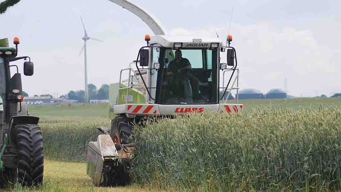 Farmers urged to watch working hours of staff this harvest