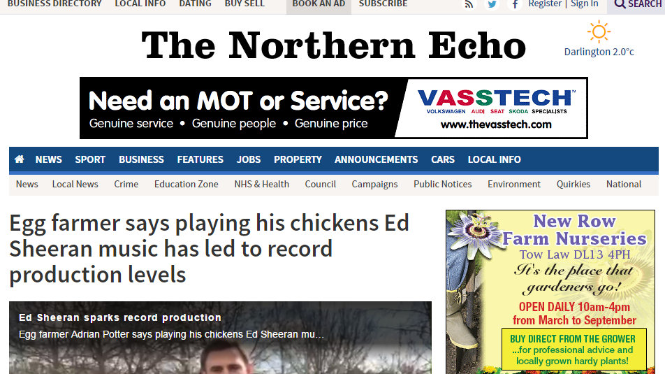 Egg farmer says playing his chickens Ed Sheeran music has led to record production levels