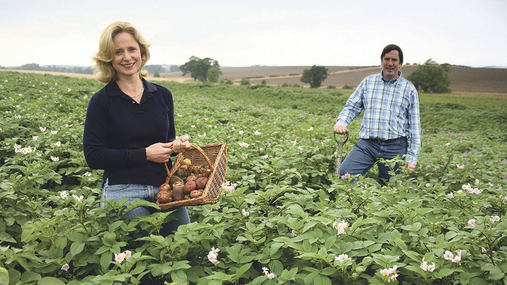Carroll's Heritage Potatoes