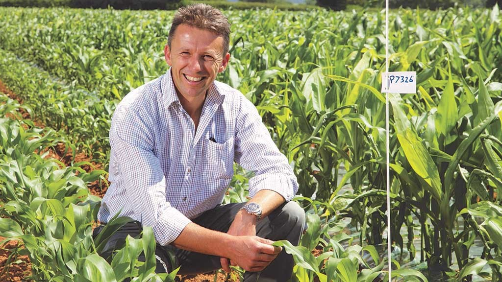 Maize Matters: Importance of seedbed preparation for maize