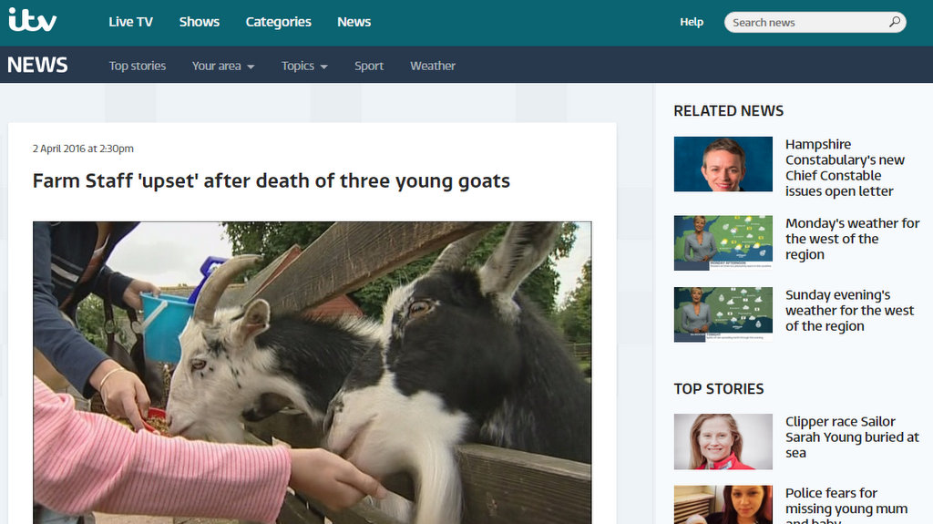 Farm Staff 'upset' after death of three young goats