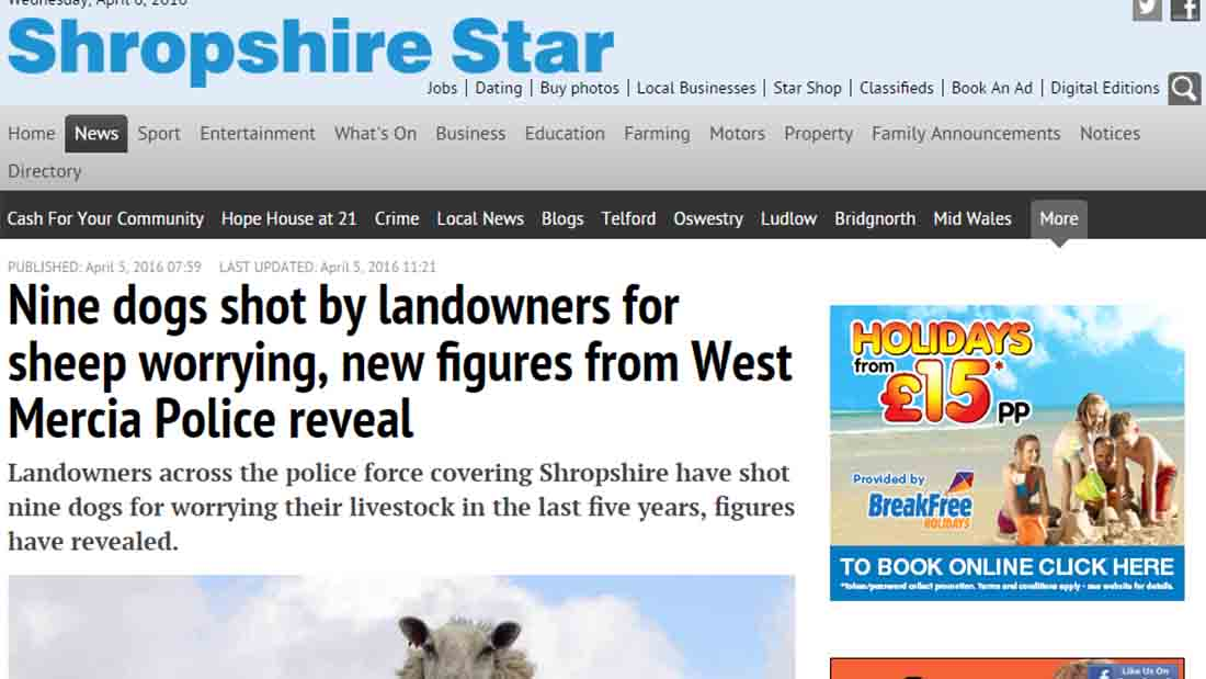 Nine dogs shot by landowners for sheep worrying, new figures from West Mercia Police reveal