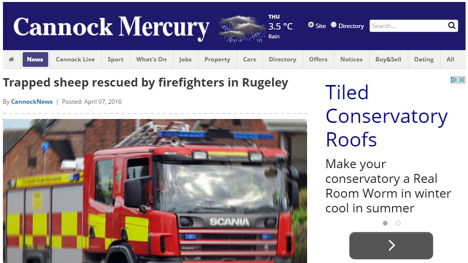 Trapped sheep rescued by firefighters in Rugeley