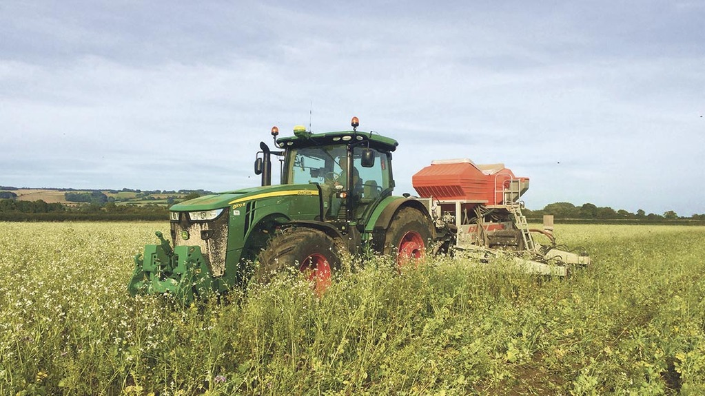 Where do cover crops fit in the weed control strategy?