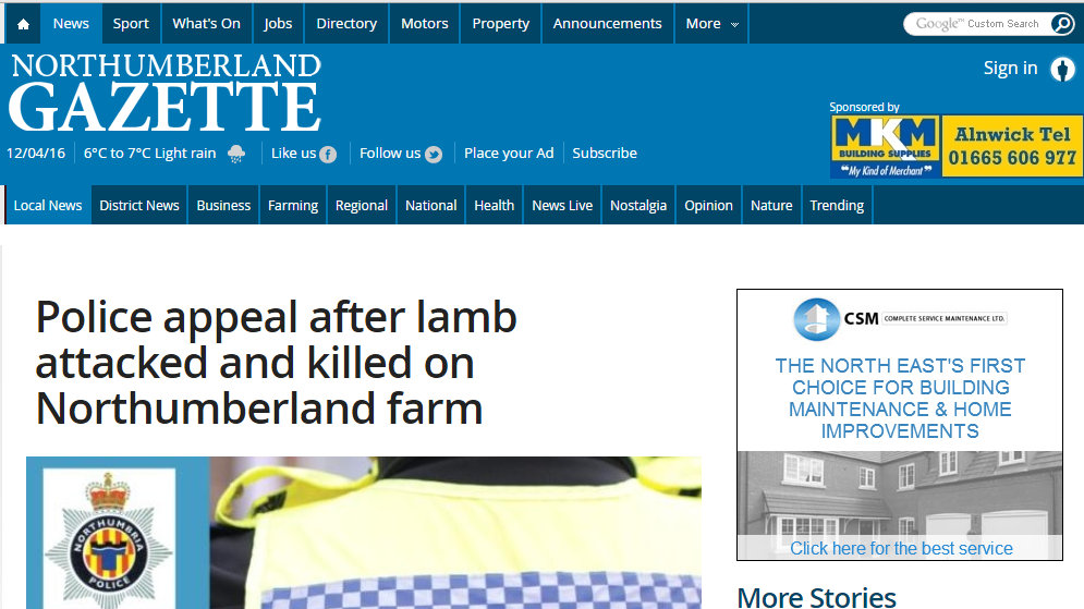 Police appeal after lamb attacked and killed on Northumberland farm