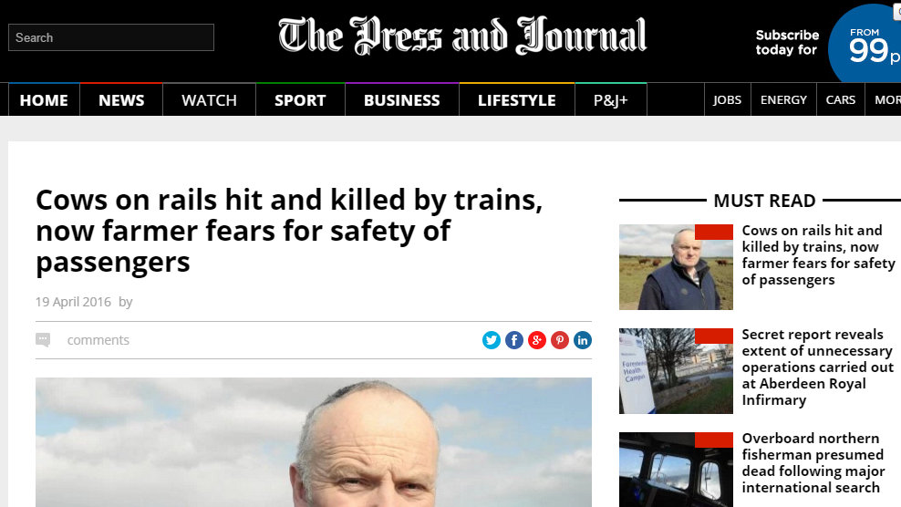 Cows on rails hit and killed by trains, now farmer fears for safety of passengers