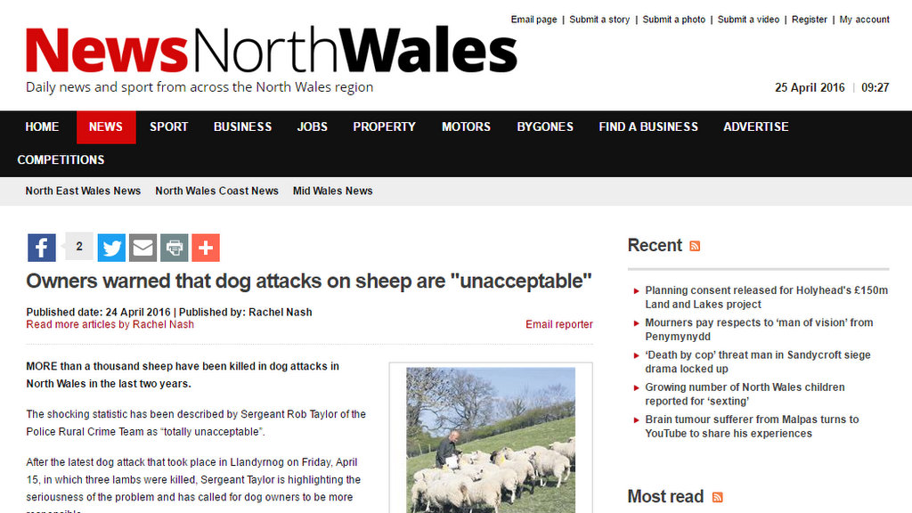 "Owners warned that dog attacks on sheep are ""unacceptable"""