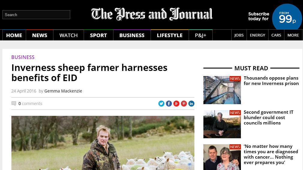 Inverness sheep farmer harnesses benefits of EID