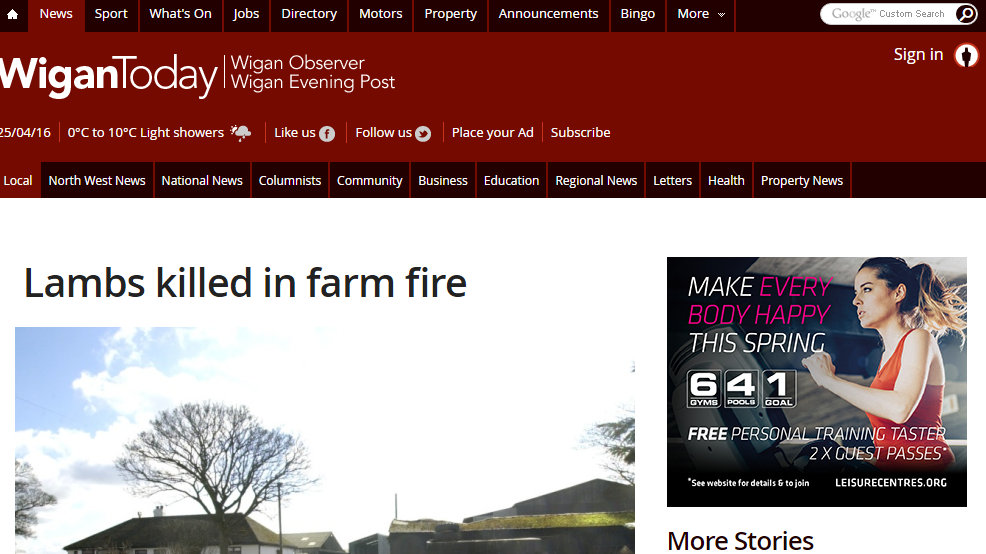 Lambs killed in farm fire