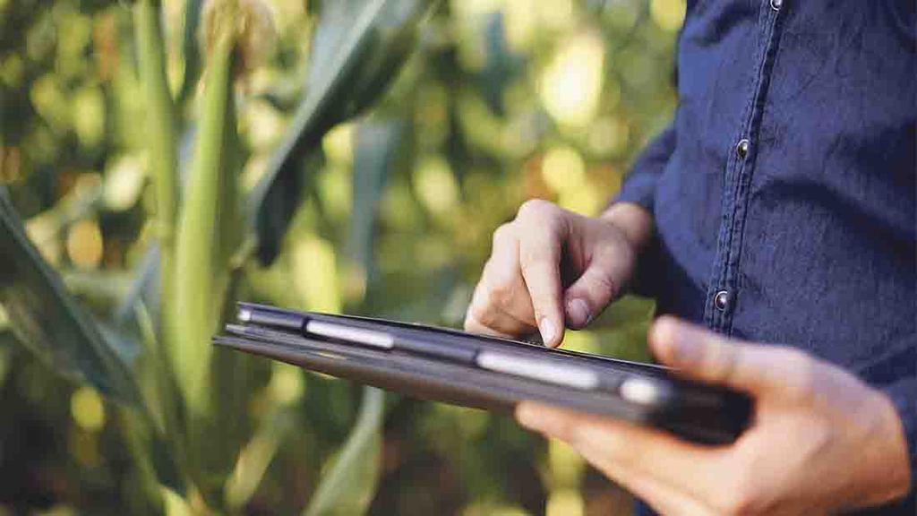 Farmers 'held back' by poor internet connections and phone signal