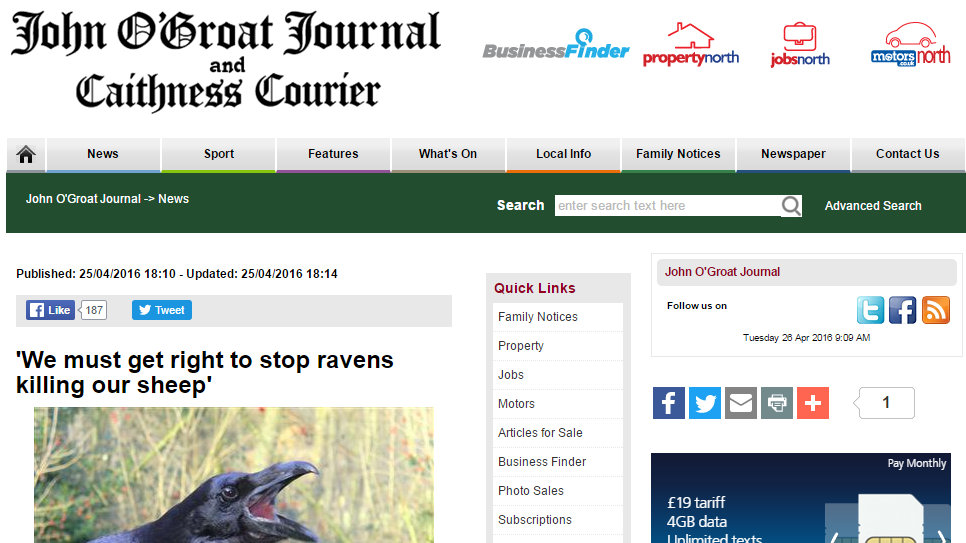 'We must get right to stop ravens killing our sheep'