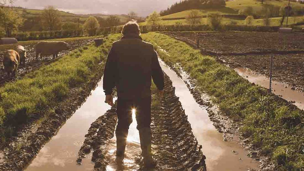Agricultural businesses on a knife-edge as financial crisis escalates