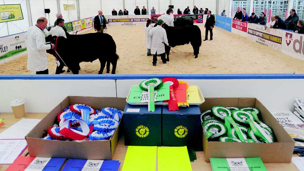 Judging in the ring at least year's Beef Expo, which took place at the York Auction Centre.