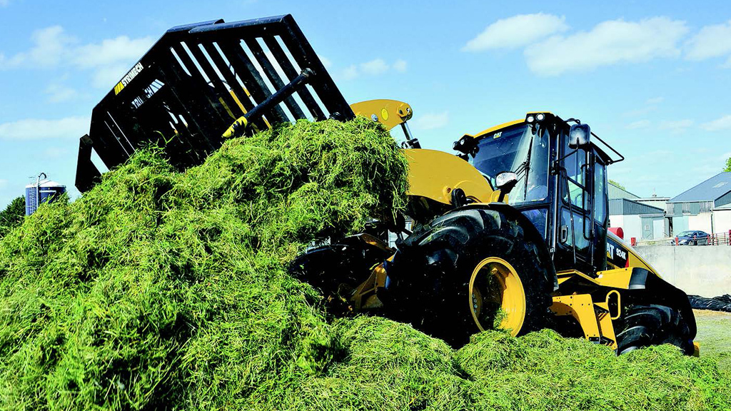 Prioritise silage quality over quantity