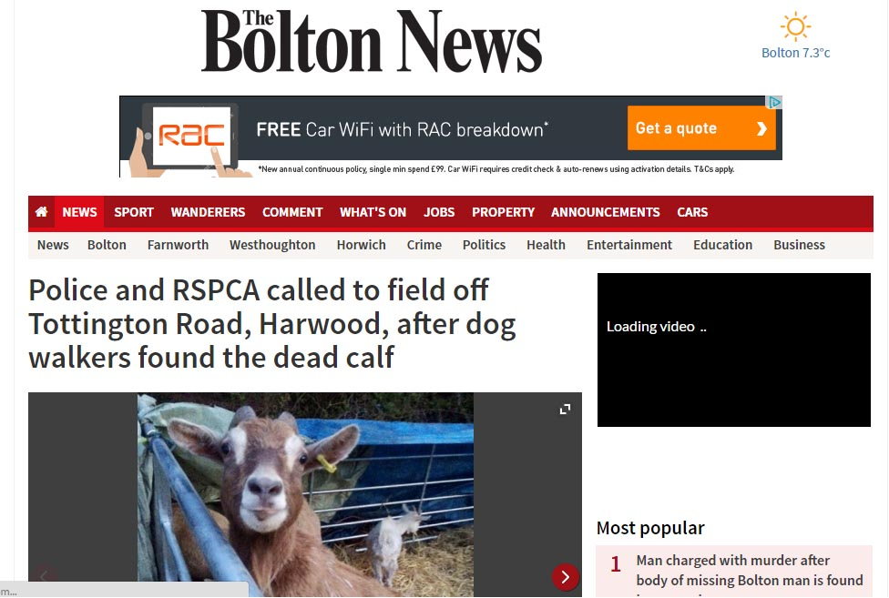 Police and RSPCA called to field off Tottington Road, Harwood, after dog walkers found the dead calf