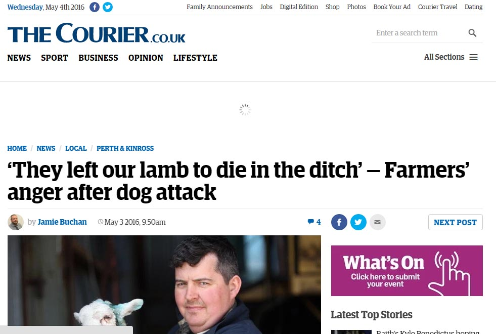 'They left our lamb to die in the ditch' — Farmers' anger after dog attack