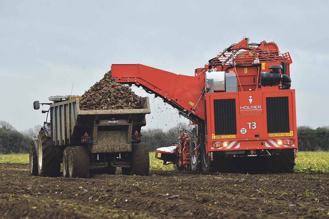 British Sugar seeks more beet growers