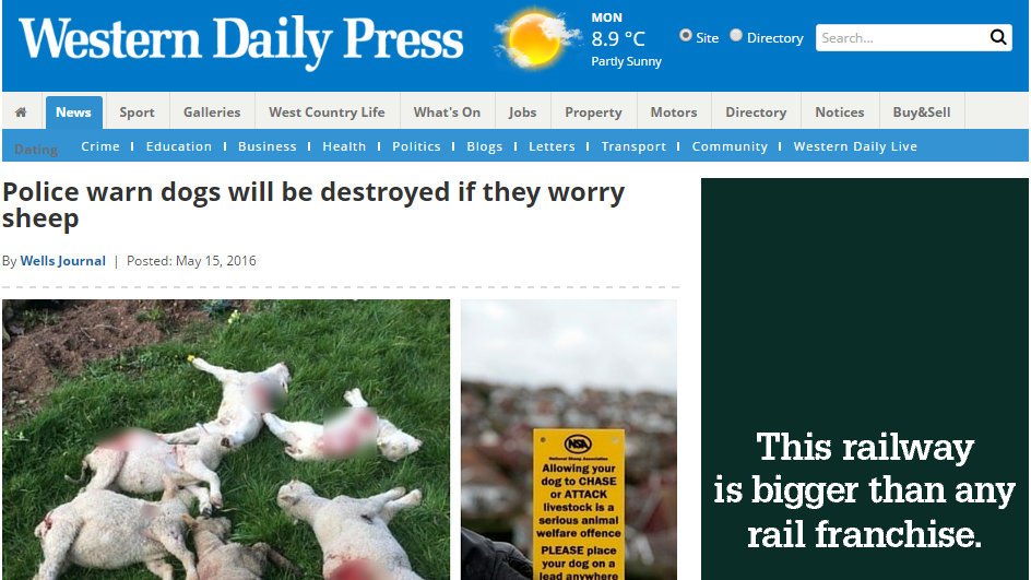 Police warn dogs will be destroyed if they worry sheep