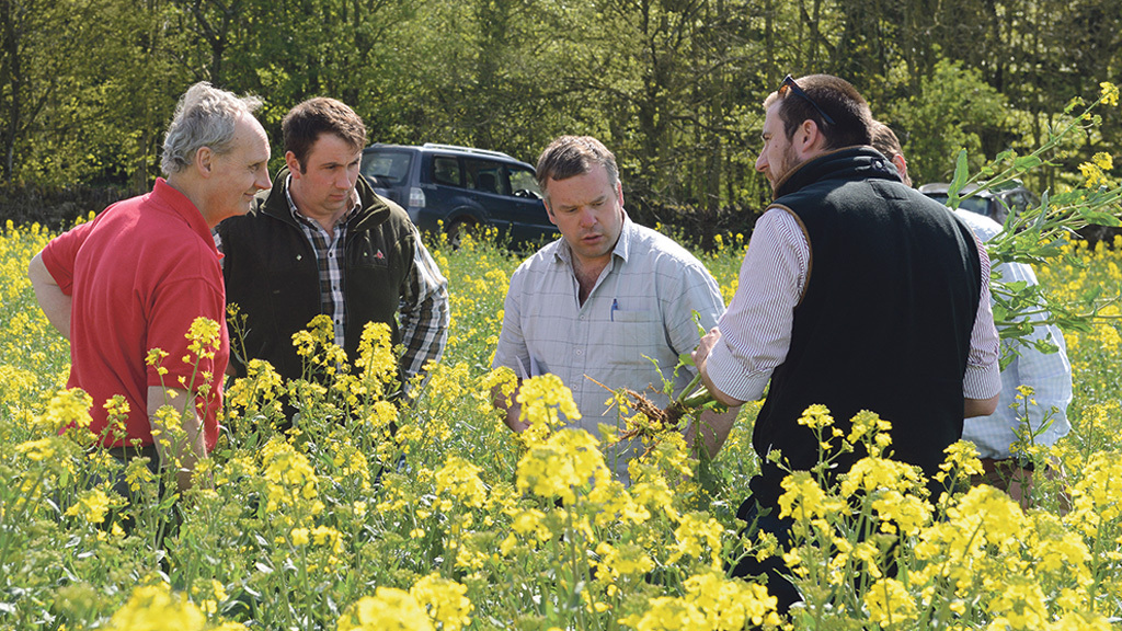 iOSR grower group assesses latest thinking