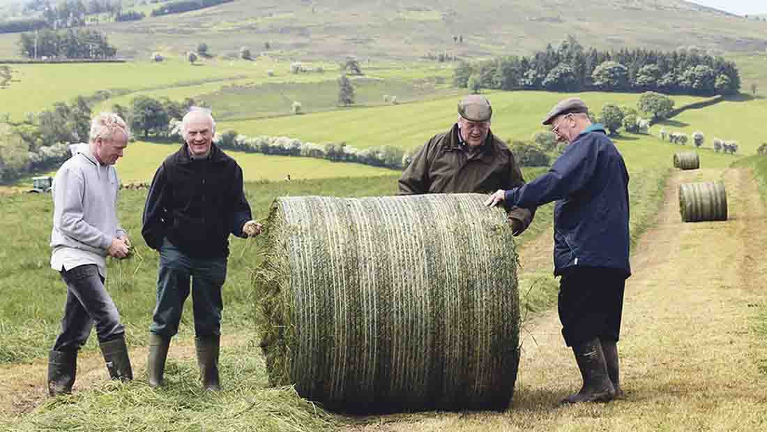 Farmers Guardian caption competition No. 7 - entries open