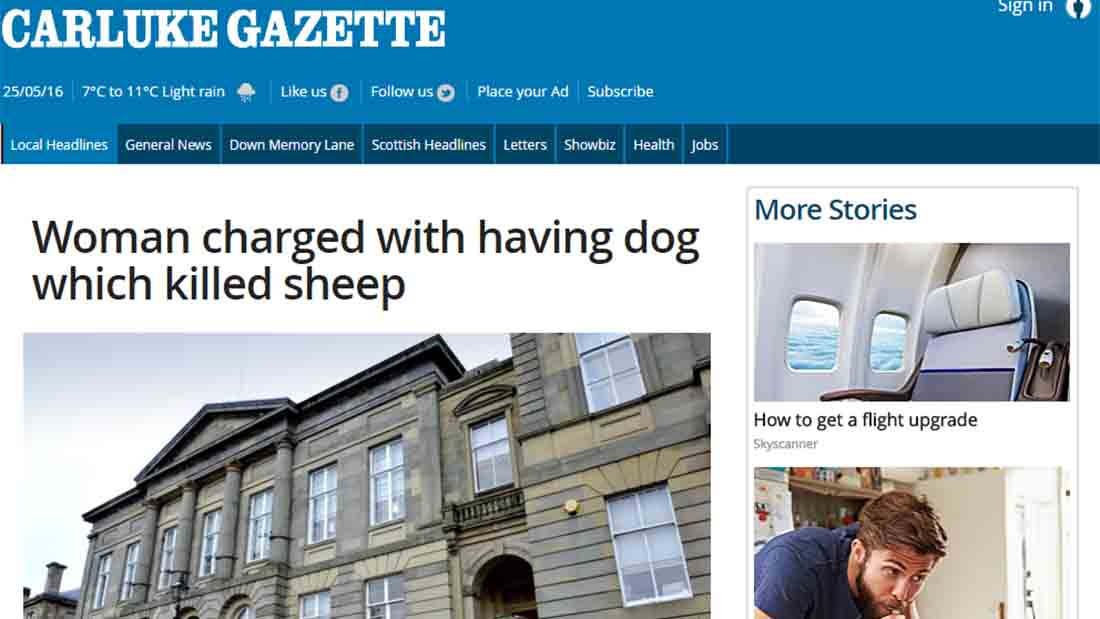 Woman charged with having dog which killed sheep