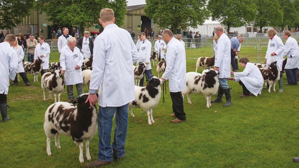 Burke Trophy double at Royal Three Counties Show