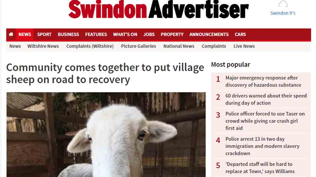 Community comes together to put village sheep on road to recovery