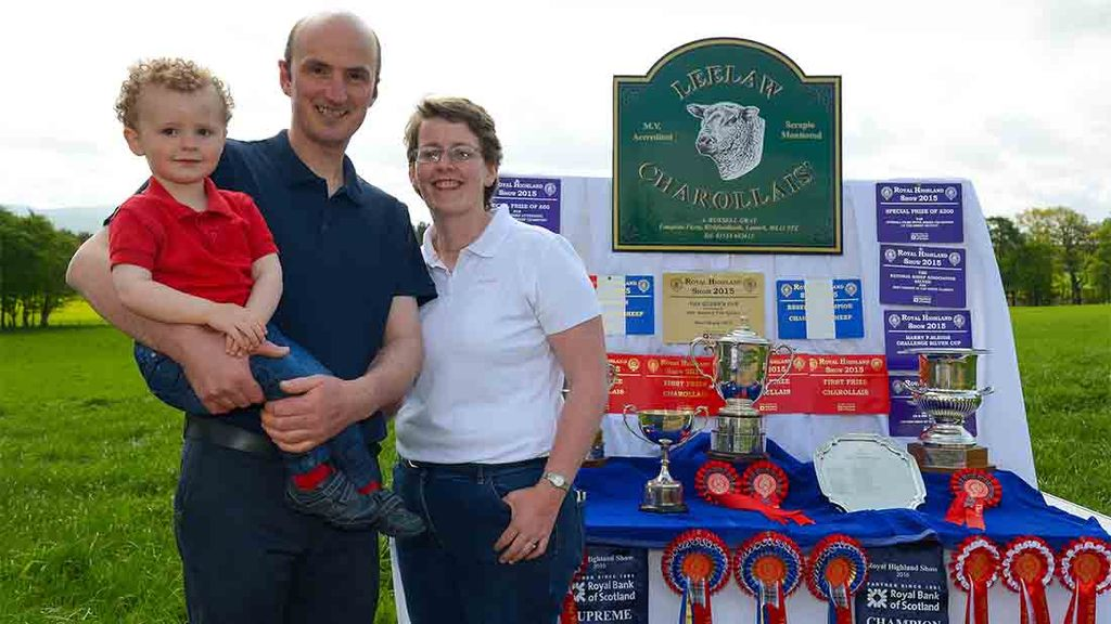 Charollais provide showing highlights for Lanarkshire farmer