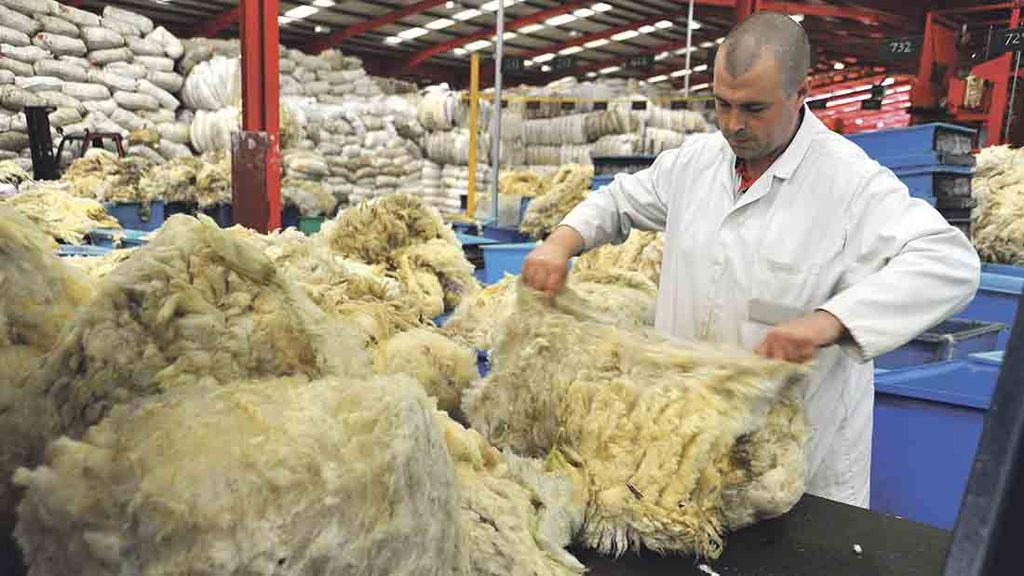 New British wool chief confident board can ride out difficult market conditions
