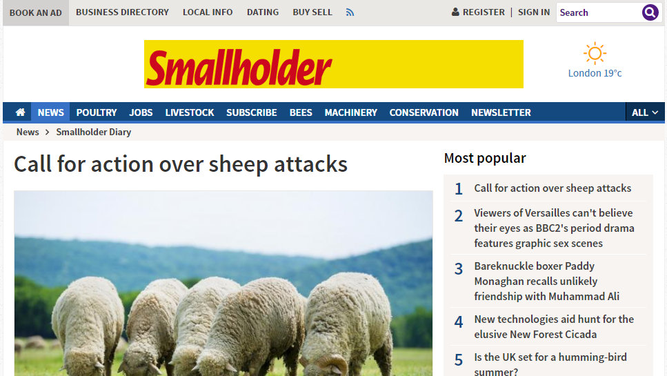 Call for action over sheep attacks