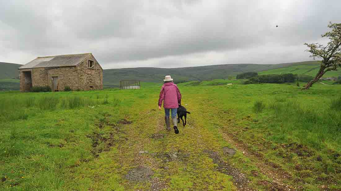'We need the support of local dog owners to help prevent livestock worrying'