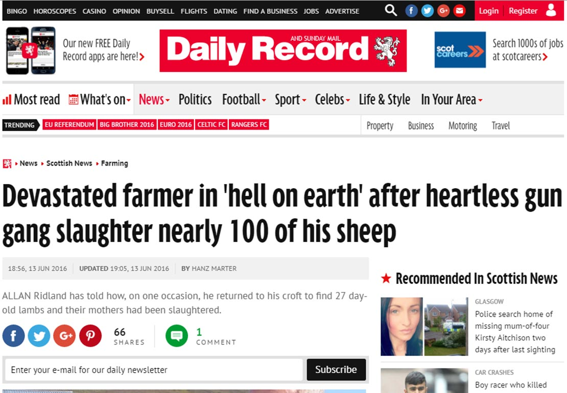 Devastated farmer in 'hell on earth' after heartless gun gang slaughter nearly 100 of his sheep