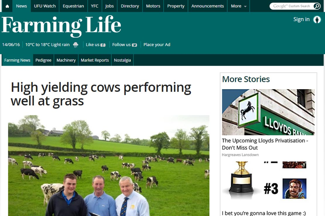 High yielding cows performing well at grass