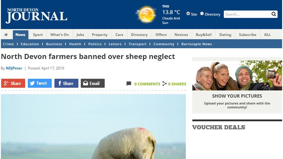 North Devon farmers banned over sheep neglect