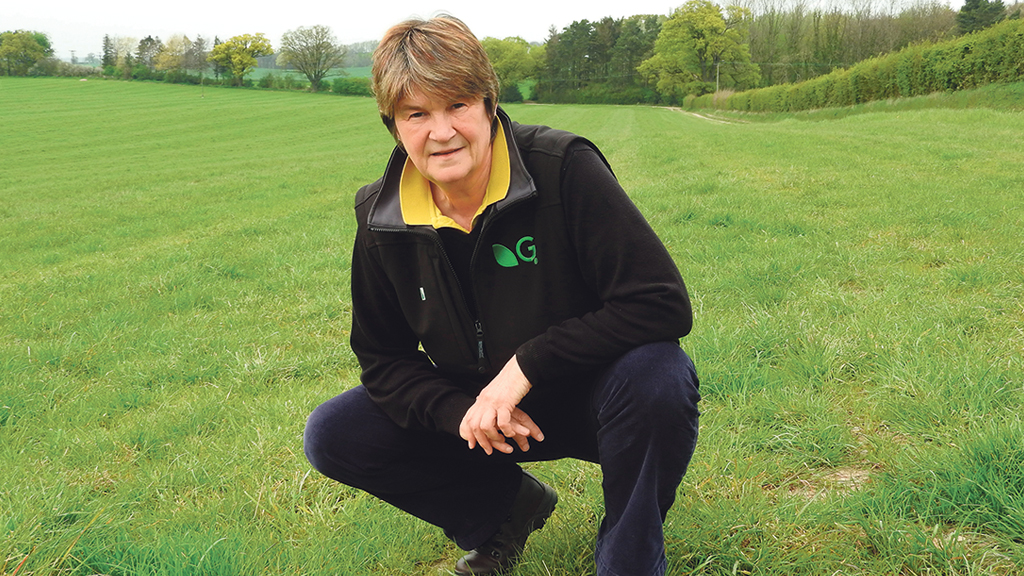 Boosting clover content in established grass leys