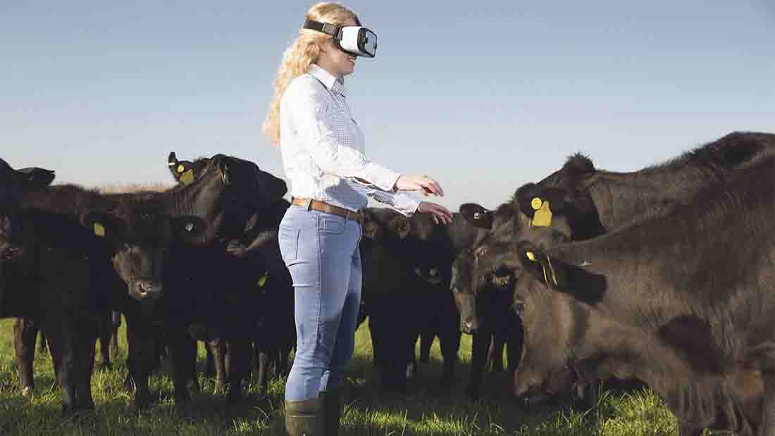 Young farmers using virtual reality in food education plan