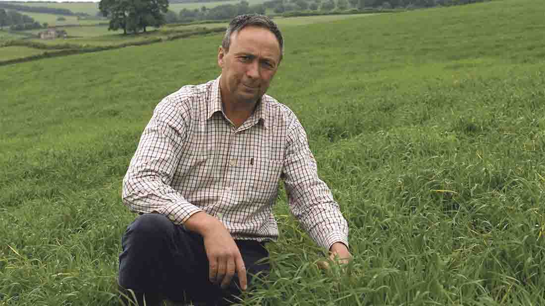 Forage crop versatility key to mixed farms success