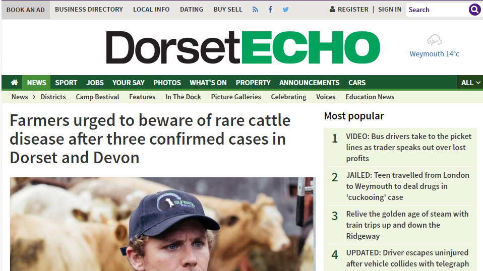 Farmers urged to beware of rare cattle disease after three confirmed cases in Dorset and Devon