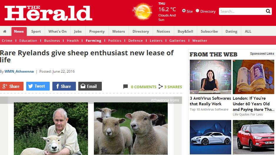 Rare Ryelands give sheep enthusiast new lease of life