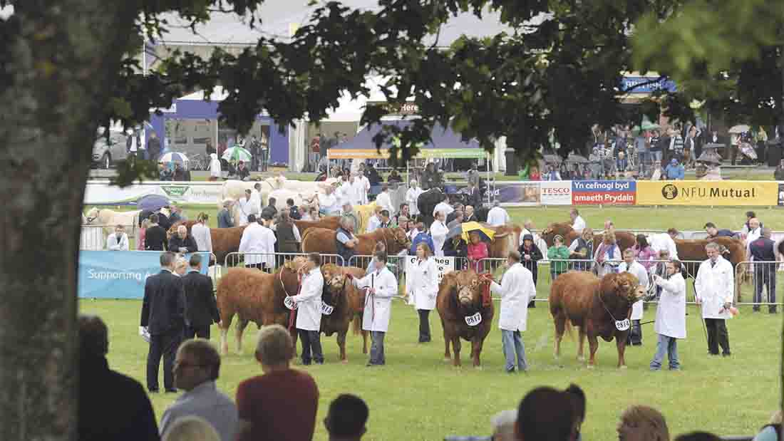 Royal Welsh Show to cement Chinese export relationship