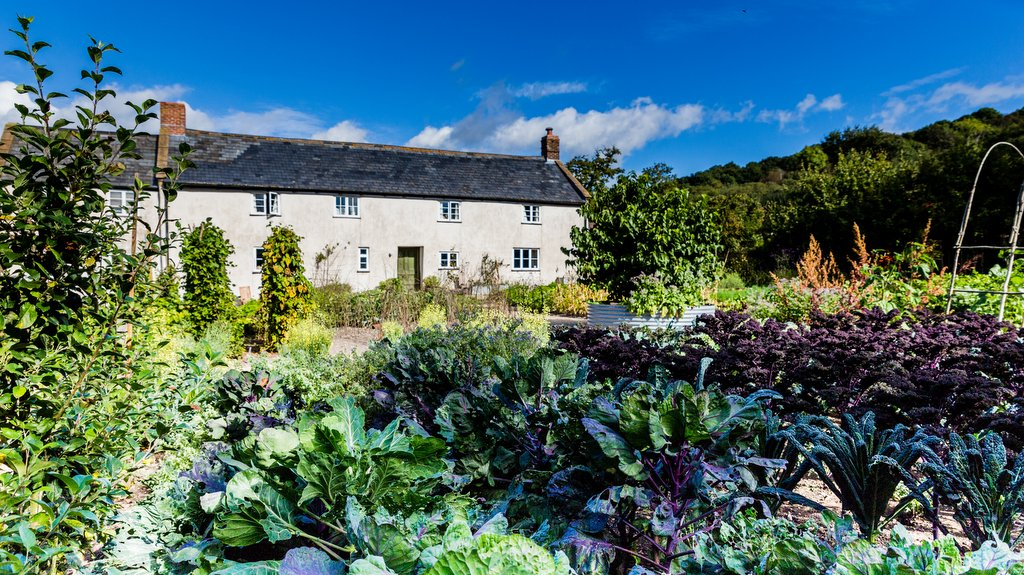 WIN cookery course for two at River Cottage