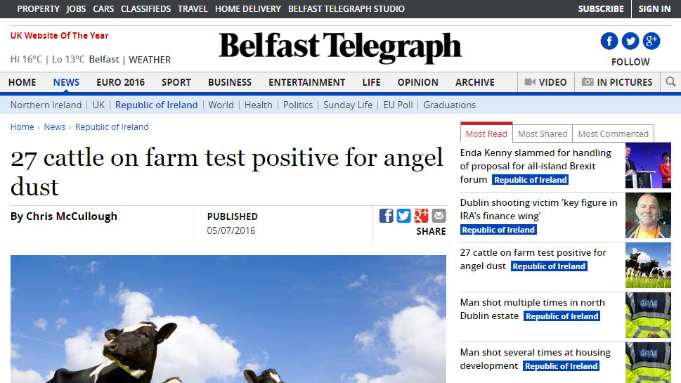27 cattle on farm test positive for angel dust