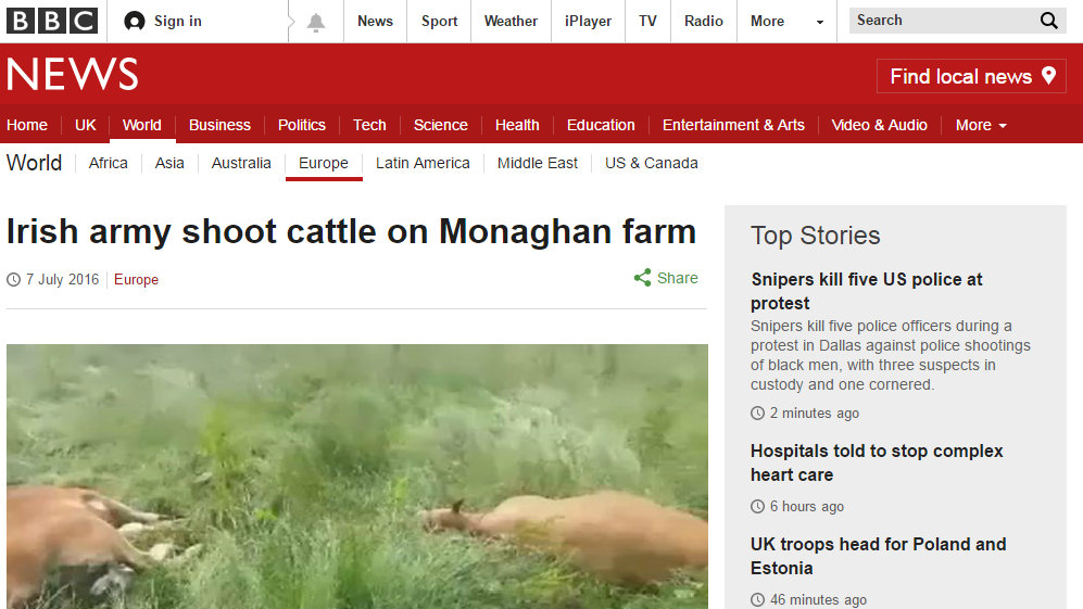 Irish army shoot cattle on Monaghan farm