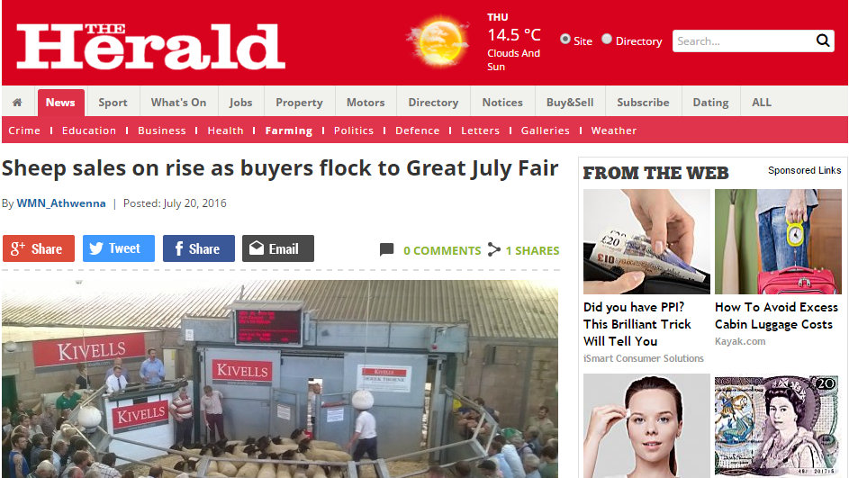 Sheep sales on rise as buyers flock to Great July Fair