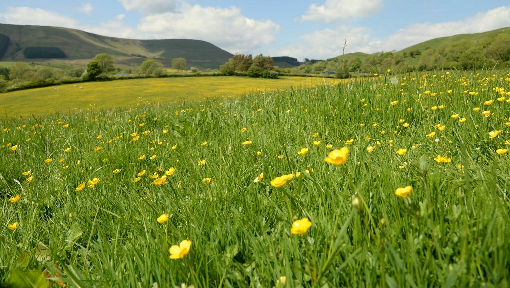 Chancellor pledges funding for agri-environment schemes post-Brexit